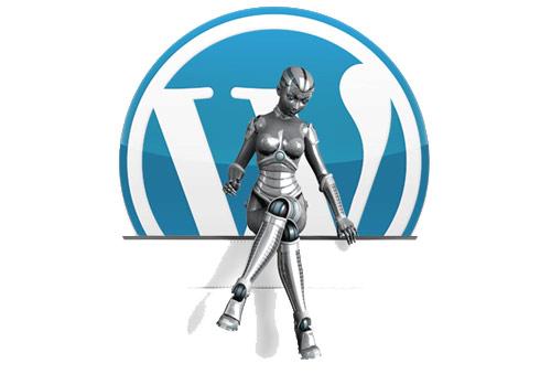 WordPress, rilasciata la versione 3.0.2