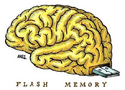 """Scienza, il cervello """"impacchetta"""" i ricordi"""