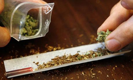 Salute, la Cannabis combatte diabete e colesterolo