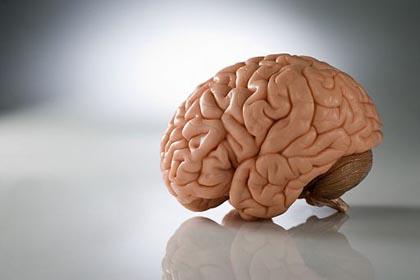 "Parkinson, scoperta la proteina ""di difesa"""