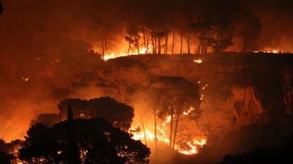 Palermo in fiamme: tutte le foto degli incendi
