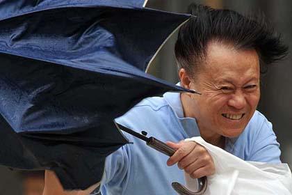 Curiosità, nasce l'ombrello a prova di… Uragano!