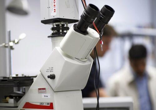 """Tumori, """"P53"""": il farmaco del futuro?"""