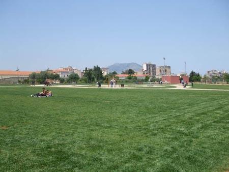 """Palermo, al Parco """"Cassarà"""" diecimila nuovi alberi"""
