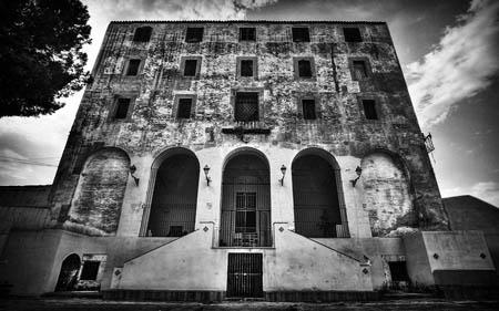Palermo e i graffiti dell'Ex Manicomio