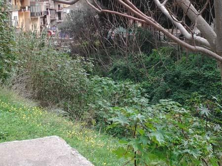"""Palermo, Boccadifalco ancora alle prese con il """"canale"""""""