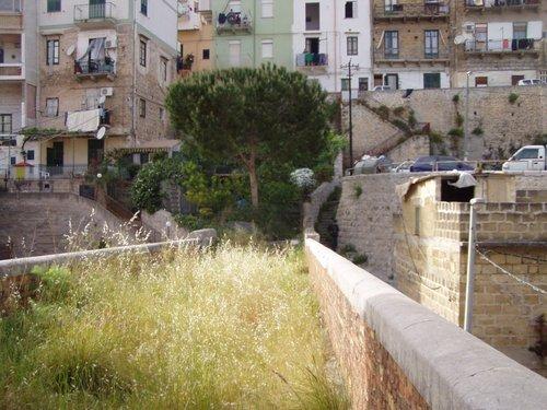 Palermo, Boccadifalco invasa dalle pulci