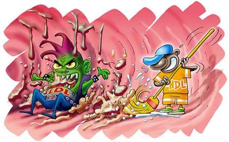 Salute, scoperta la sostanza che crea il colesterolo cattivo