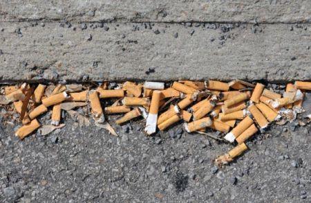 Ambiente, da luglio 2015 multe per chi sporca le strade