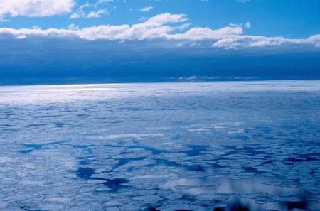 Natura, il 2014 anno più caldo del secolo