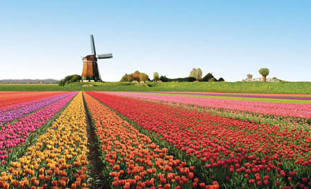 Olanda, presto al via la ferrovia ad energia eolica