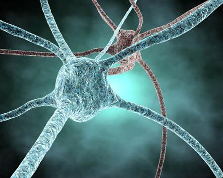 Salute, ricrescita dei neuroni contro la depressione