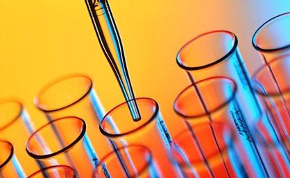 Curiosità, il farmaco anti diabete allunga la vita