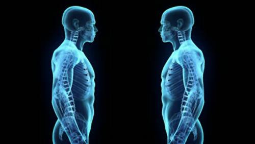 Salute - Al via le stampe 3D di parti del corpo umano