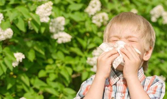 Italia, aumentano le allergie neonatali