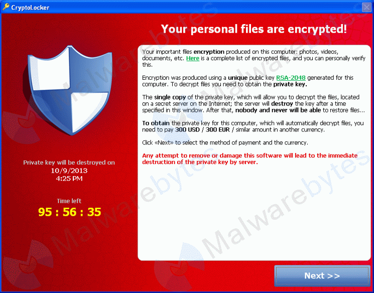 Cryptolocker - Finestra di riscatto