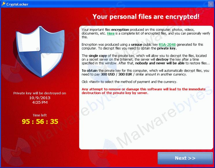 Cryptolocker - Finestra di riscatto
