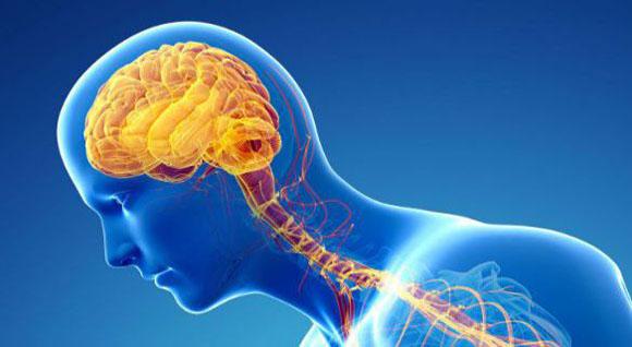 Morbo di Parkinson - Nuove speranze dalla saliva