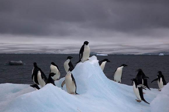 Ambiente, buco nell'ozono in diminuzione