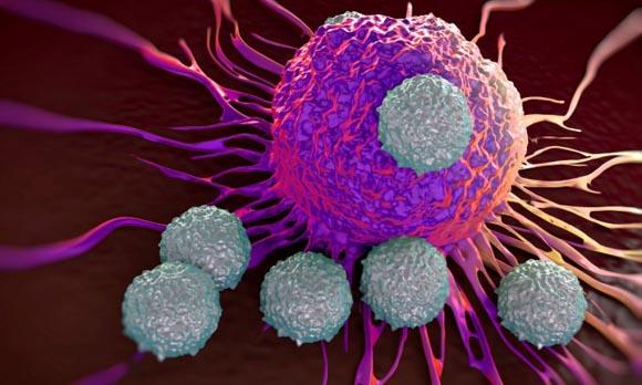 Tumori - Scoperto come nascono e come si evolvono