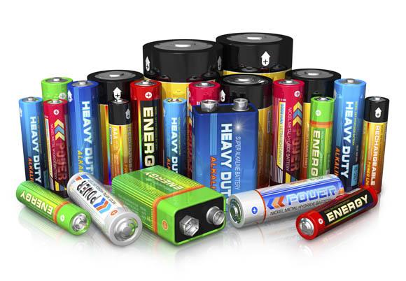 Ambiente - I funghi riciclano le batterie