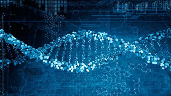 Curiosità - Scoperti 6500 geni differenti tra uomo e donna