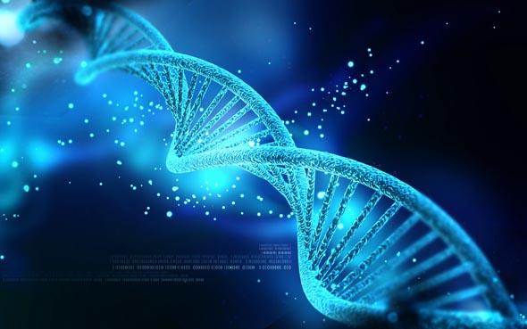 Salute, Curiosità: il 75% del DNA potrebbe essere totalmente inutile!