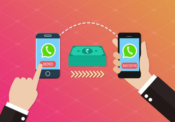 Whatsapp apre a pagamenti e profili Business