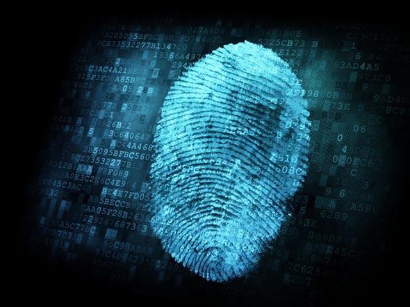 Curiosità - Le impronte digitali non sono uniche - La scienza conferma