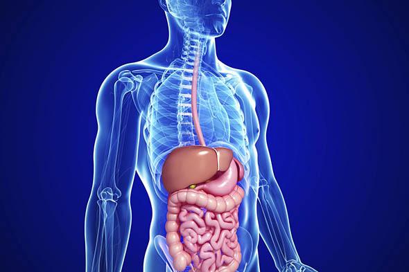 Tumori dell'apparato digerente meno aggressivi con Aspirina e cereali