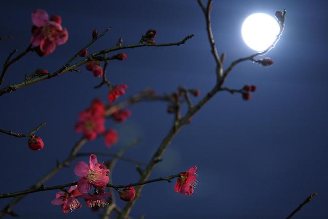 La notte - Il momento più difficile e delicato della giornata