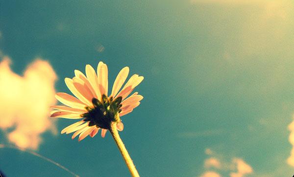 Gli amori restano indelebili, anche se non vogliamo