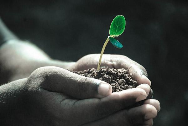 Costruire il nostro domani dai piccoli passi di oggi