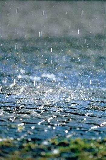 Finalmente è piovuto anche qui (Piggia sui pensieri , ripensando a un anno fà)