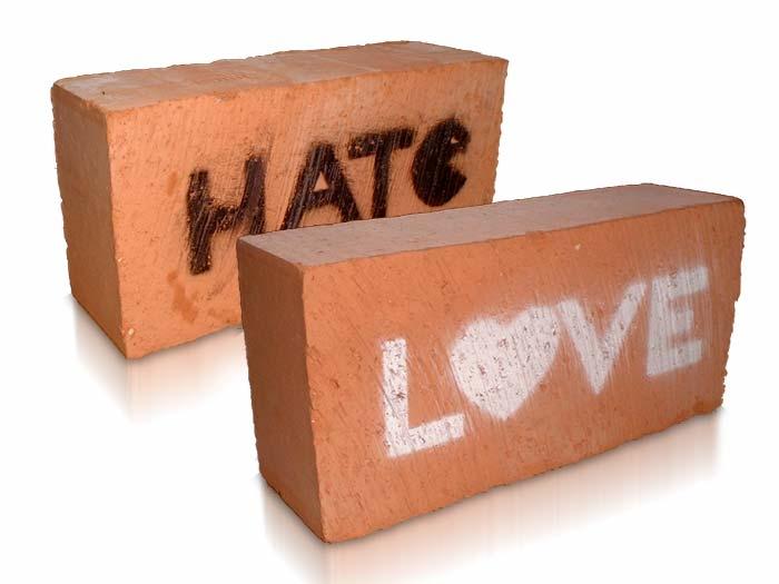 Amore e odio : due facce della stessa medaglia